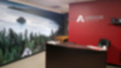 Printed wall wrap and wall mural we installed in Seattle Bellvue Wa