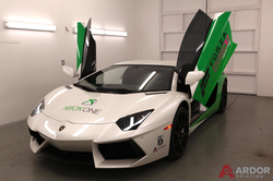 Vinyl Wrap we printed for Forza