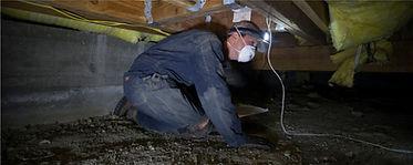 inspectionsSmall.jpg