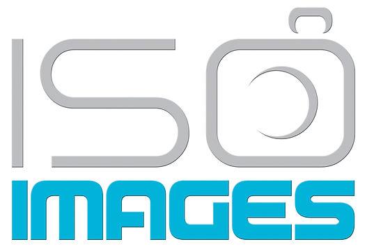 ISO-logo-large.jpg