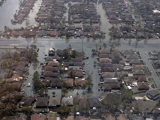 Katrina: Slow Progress, Tens of Thousands; Business No Continuity Plan