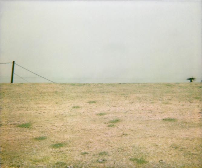 Cut Brown Grass, 2010