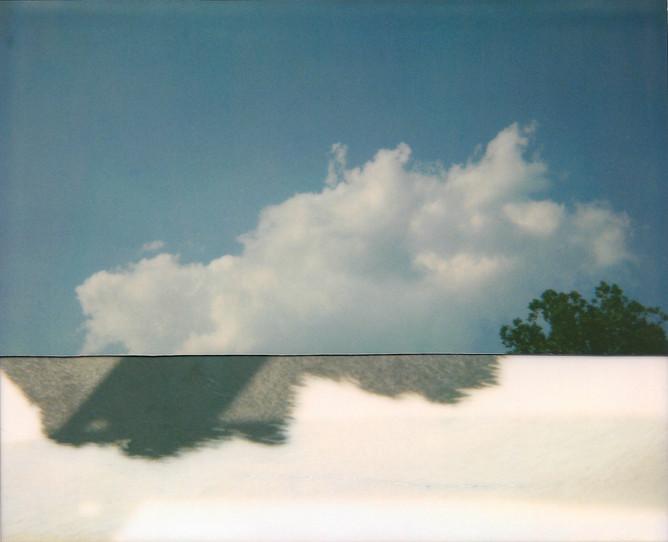 Cut Cow Sky, 2010