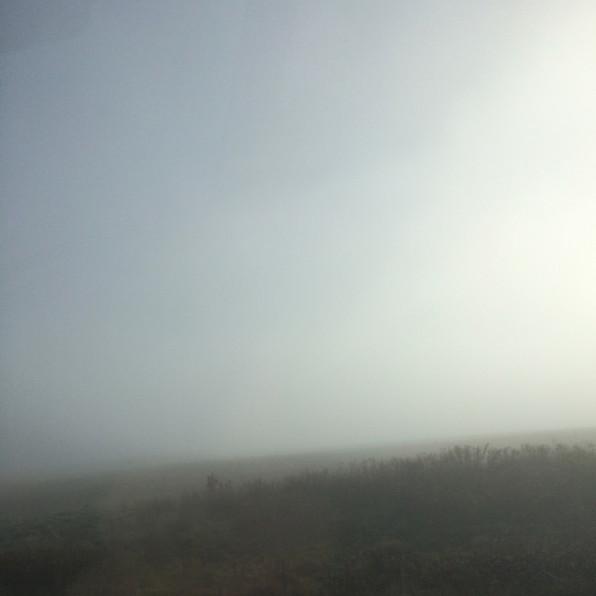 Road Fog 13, 2020