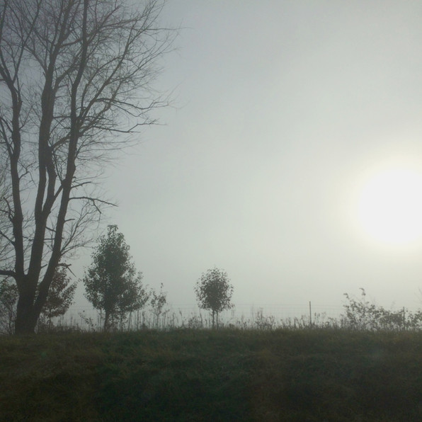 Road Fog 12, 2020