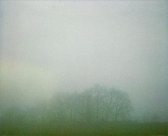 Faraway Trees Fog