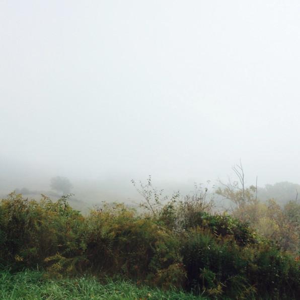 Road Fog 10, 2020