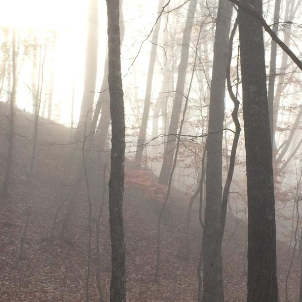 Road Fog 1, 2020