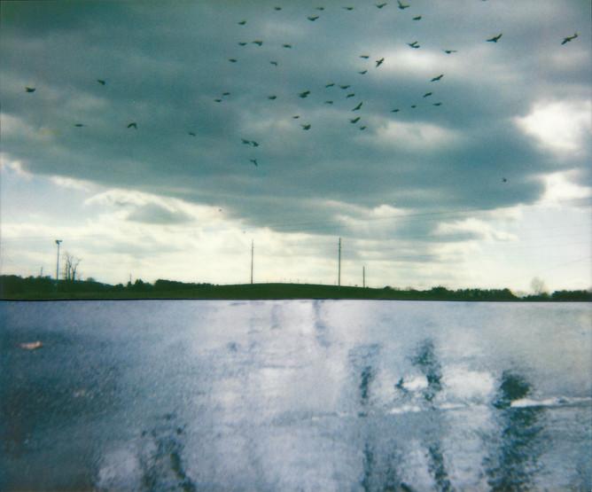 Cut Sea Sky, 2010
