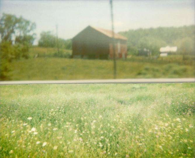Cut House Meadow, 2010