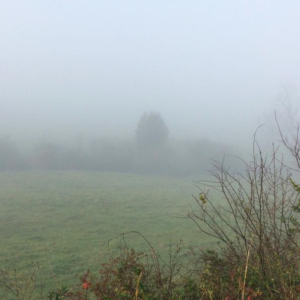 Road Fog 6, 2020