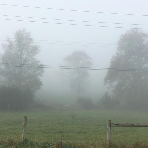 Road Fog 7, 2020