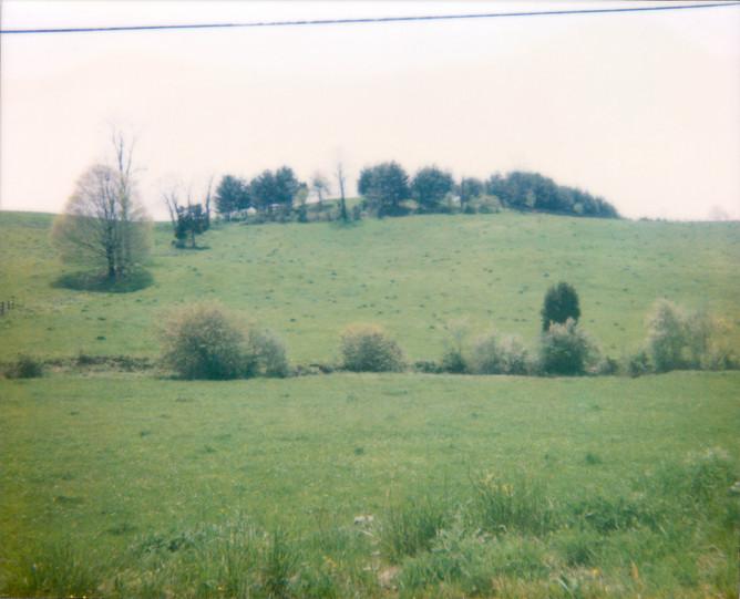Field Green Wire