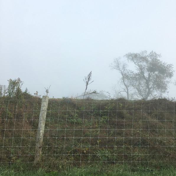 Road Fog 11, 2020