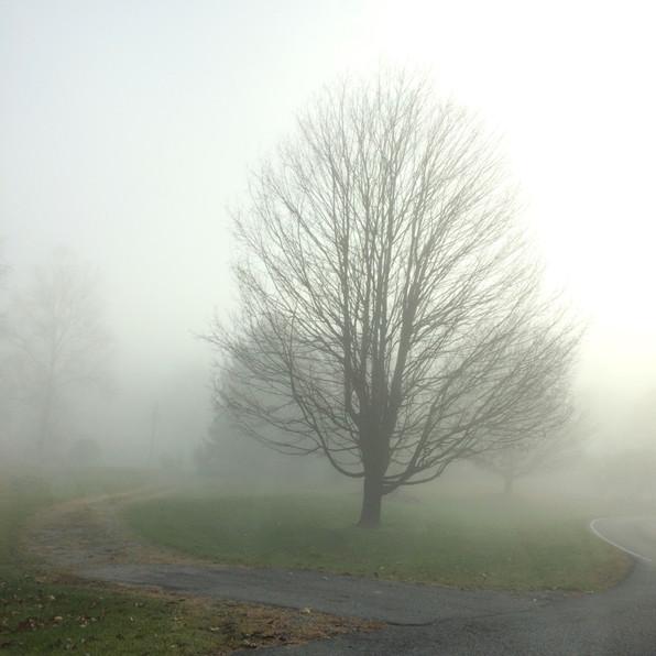 Road Fog 4, 2020