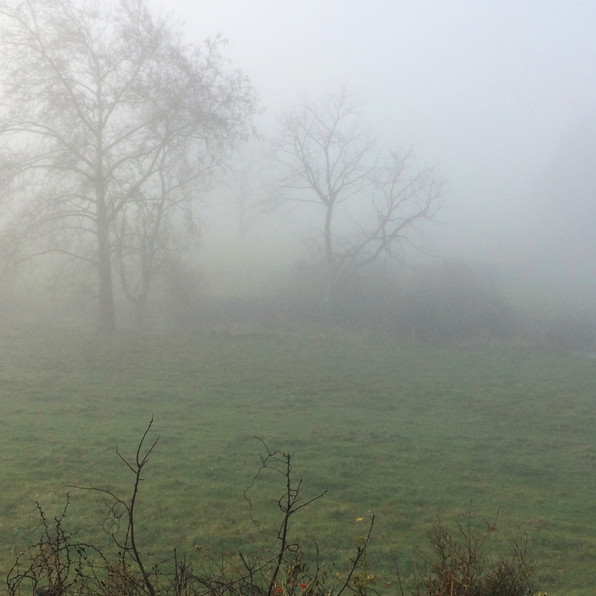 Road Fog 5, 2020