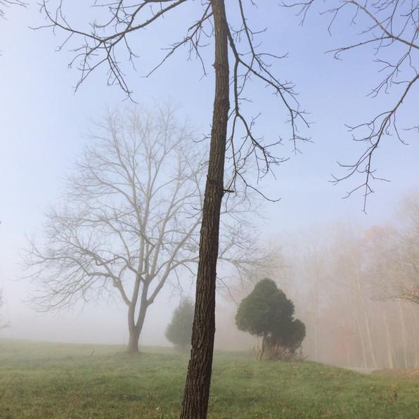 Road Fog 3, 2020