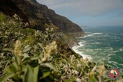 Unravel Surf Travel-5460.jpg
