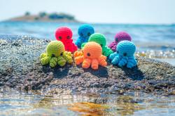 Oktopusi