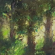 Forêts et arbres verts sur fonds dorés
