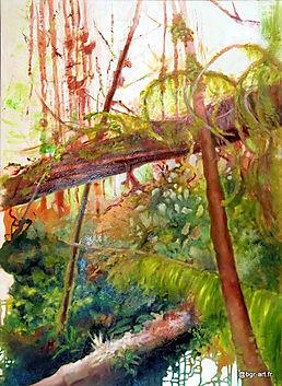 Troncs rouges et lichens verts