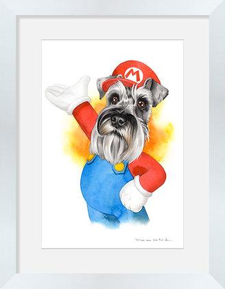 Schnauzer Mario Bros