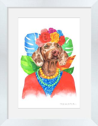 Salchicha Manchas Frida