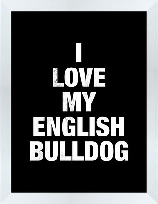 I love my English Bulldog