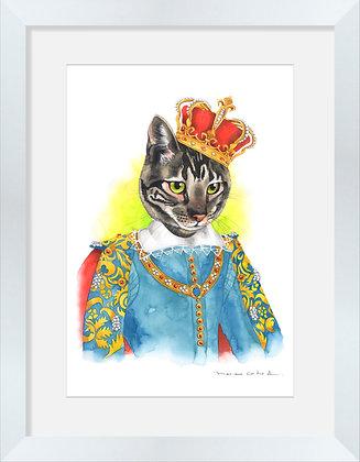 Gato Rey