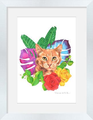 Gato Flores