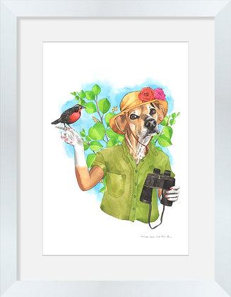 Mestizo Juanita Safari