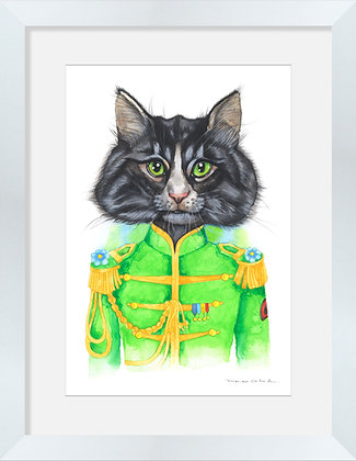 Gato Beatles Verde