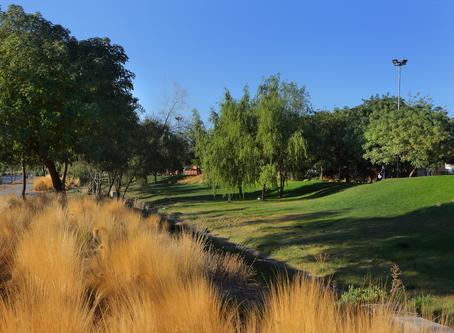 """""""La armonía con su entorno ya está lograda en el Parque Empresarial"""""""