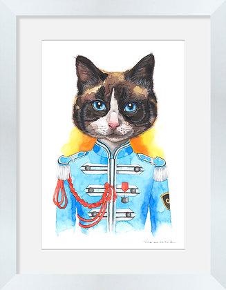 Gato Beatles Azul