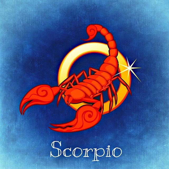 Scorpio Scorpion Zodiac Symbol