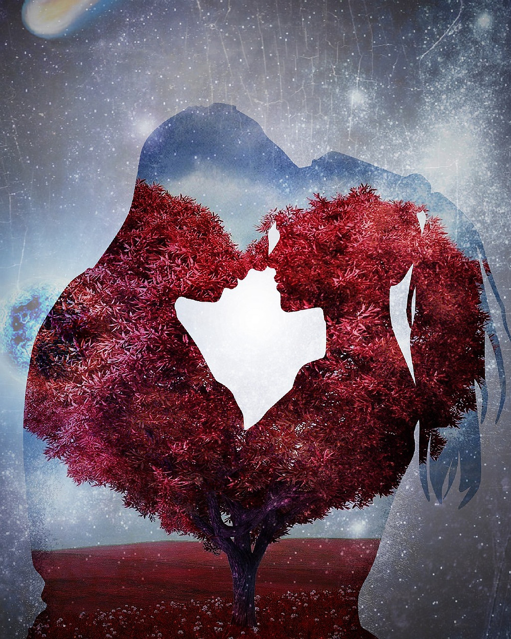 Man and women silhouetted against a ruby-leaved tree