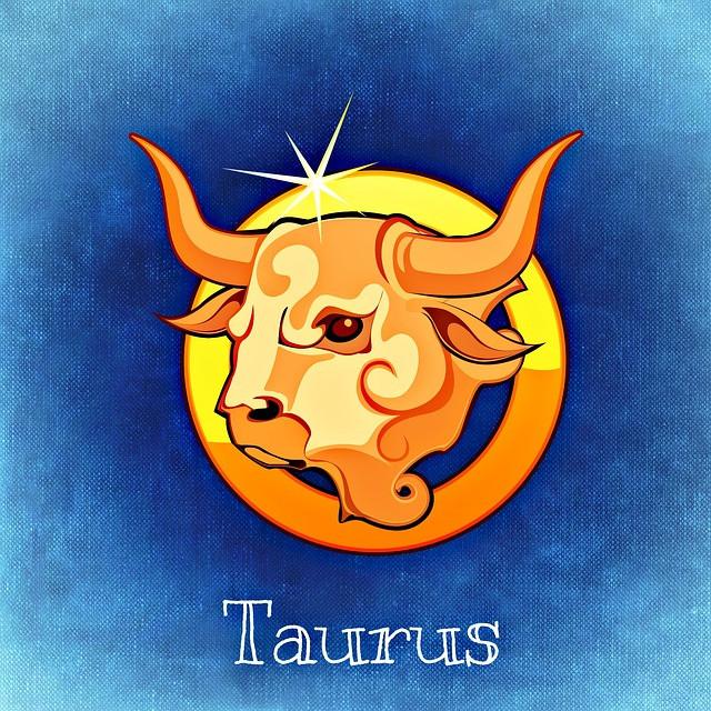 Taurus Bull Zodiac Symbol