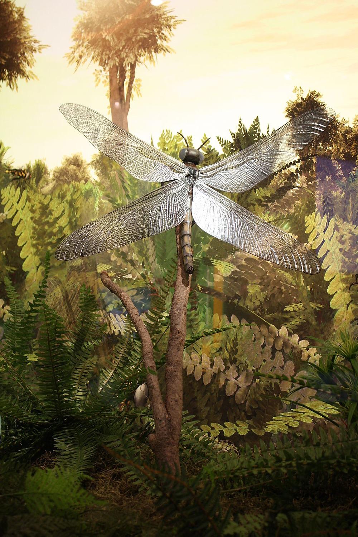 Prehistoric Dragonfly, Future Amber