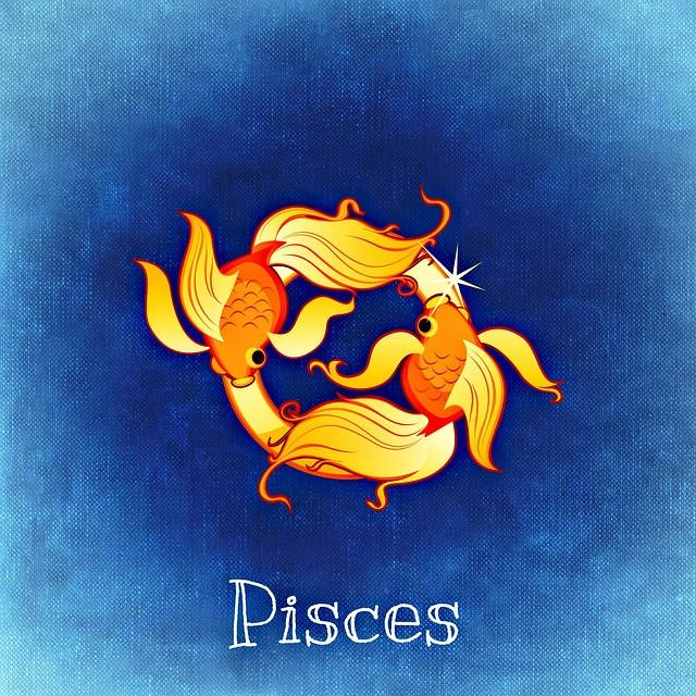 Pisces Fish Zodiac Symbol