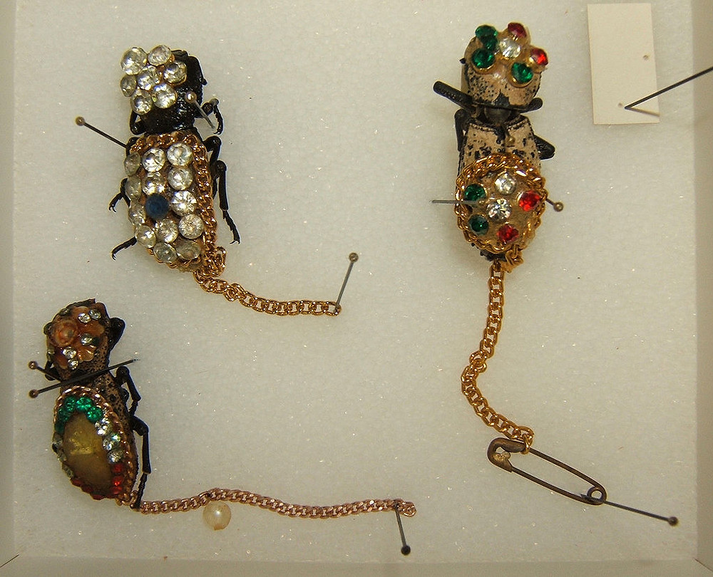 (Formerly) Living Insect Jewellery