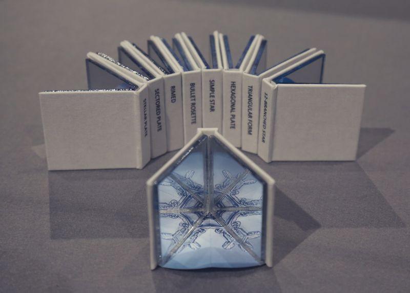 Ice Crystal Mirror Library.jpg