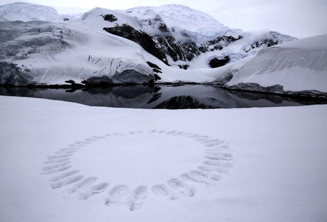 Leave only footprints - Paradise Bay.jpg