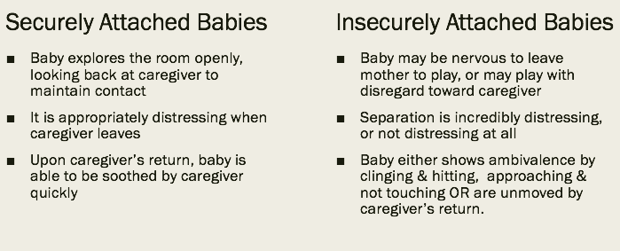 Difference between secure and insecure babies in Strange Situation Experiment; adult secure functioning relationships