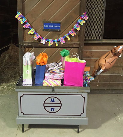 horse riding birthday party