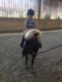 Pony Rides, birthday party