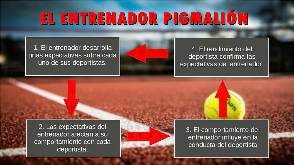 diagrama entrenador Pigmalión