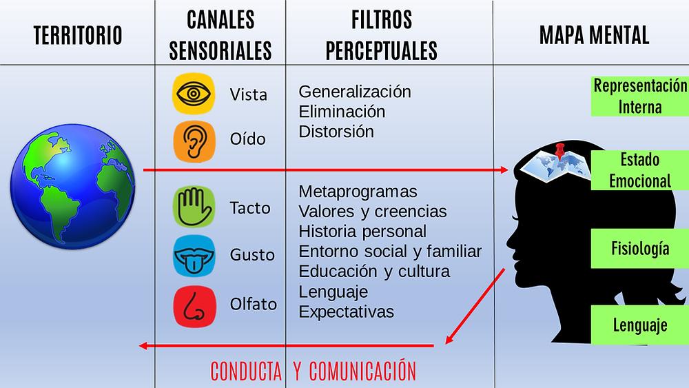 modelo comunicación PNL