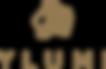 ylumi-logo_300x300.png