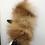Thumbnail: Unika luffe med ræv