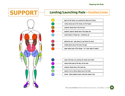 AS 5th ed - Mapping the Body pg 20.png
